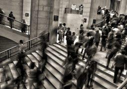 Market research companies dubai